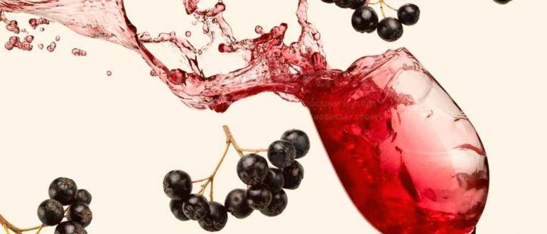 вино из черноплодной рябины в домашних условиях фото