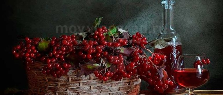 vino-iz-kalinyi-v-domashnih-usloviyah-foto