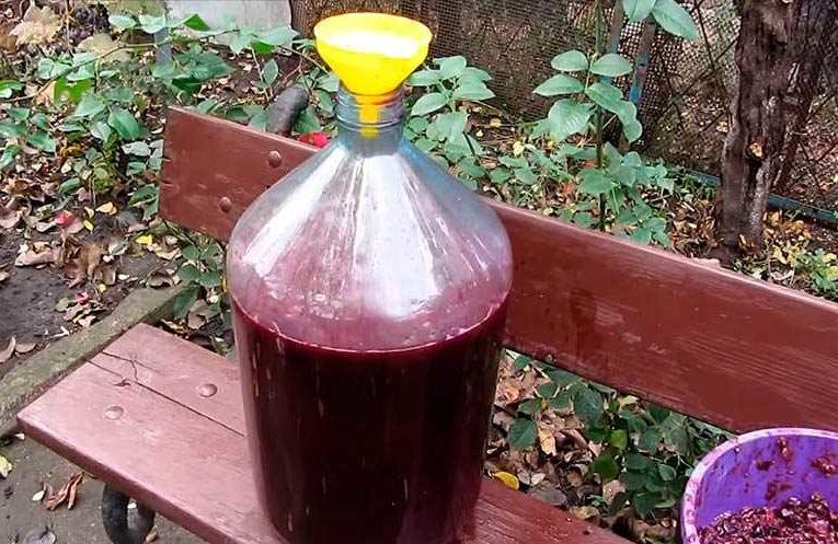 бутыль с виноградным соком фото