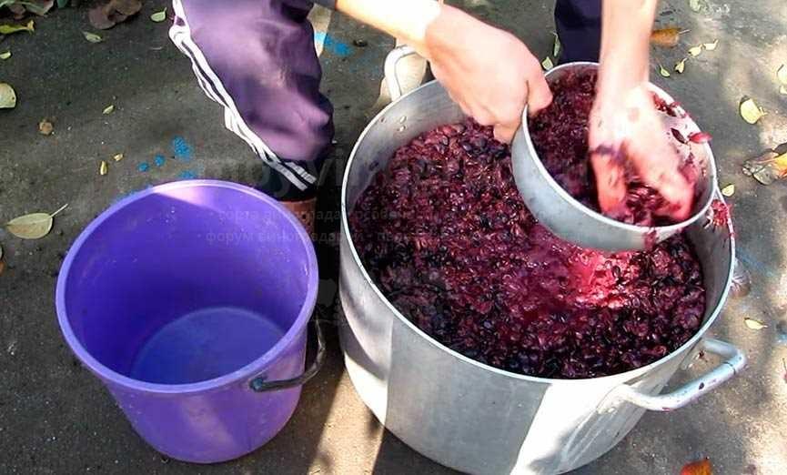 Отделение жмыха винограда для чачи фото