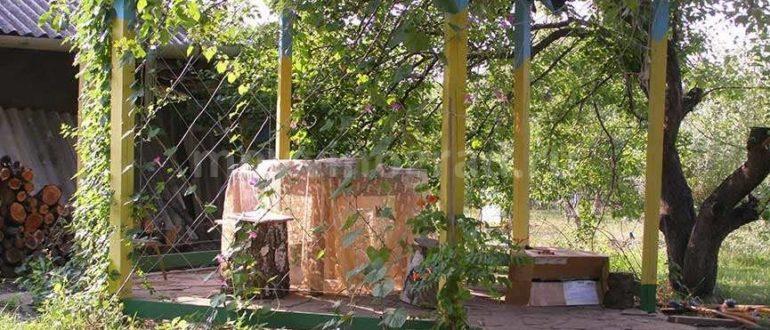 Беседка под виноград фото