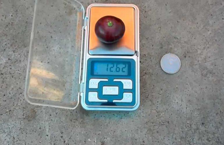 Сравнение ягоды винограда с монетой фото