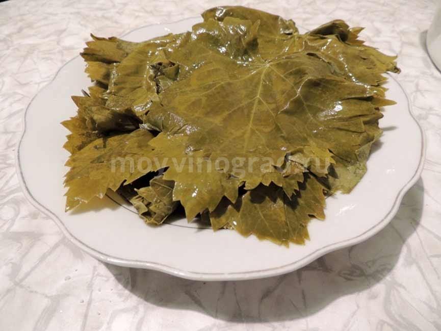 Листья для долмы хранение фото