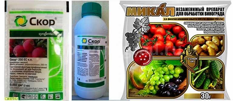 Фунгициды-скор-и-микал-для-винограда-фото