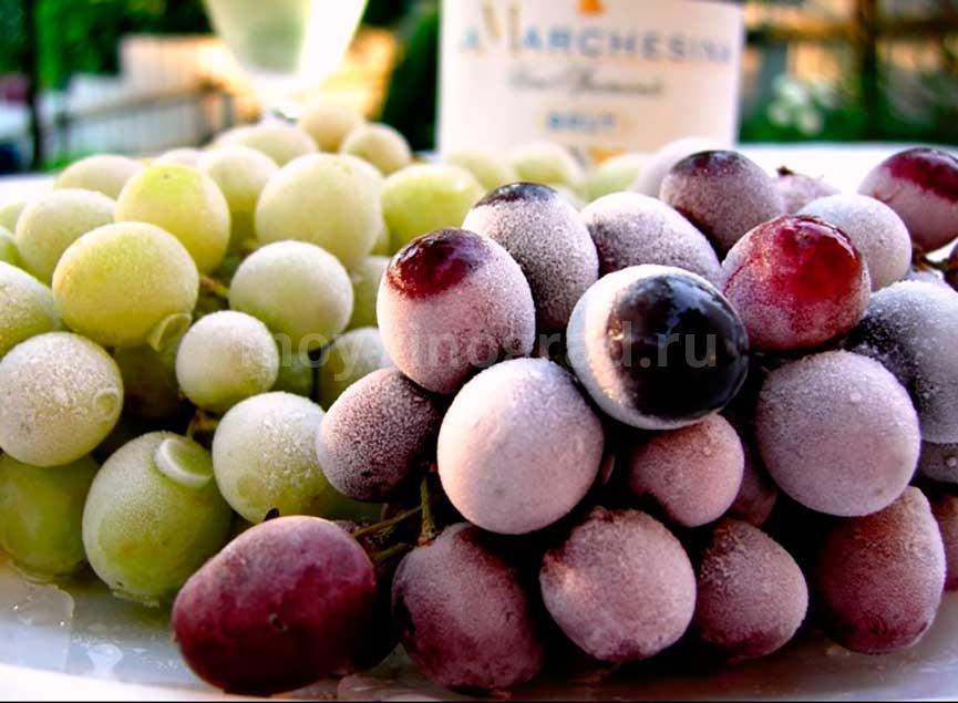Замороженный-на-зиму-виноград-фото