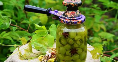 маринованный-виноград-фото