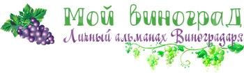 Логотип Мой Виноград