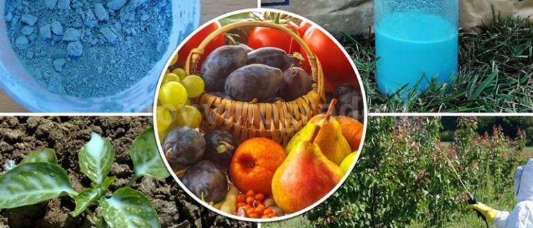 Применение бордосской жидкости в саду